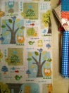 A better view of the great fabric for quilt 1.