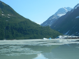We couldn't get up close and personal with the glacier because there was still ice on the water. [It was chilly water!]