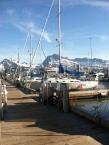 Valdez Harbor.